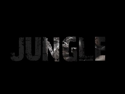 Video: Yung Swiss – Jungle Ft. K.O