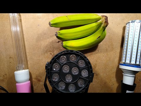 uvc.-the-green-banana-test.
