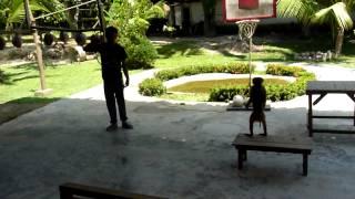 Monkey! Amazing jump!!!! Monkey school, Koh Lanta, Thailand