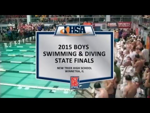 2015 IHSA Boys Swimming & Diving State Finals