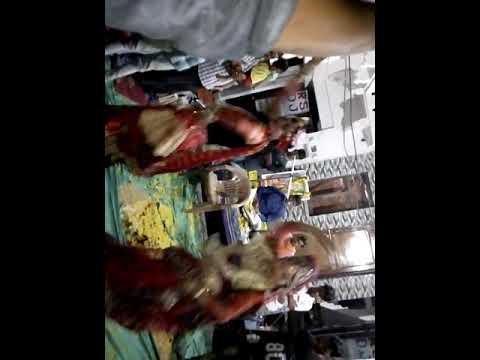 Radha krishna dance vedio in Ramgah morena