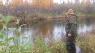 Рыбалка на реке большая (Югорск)