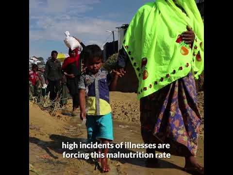 World Food Programme helping Rohingya refugees