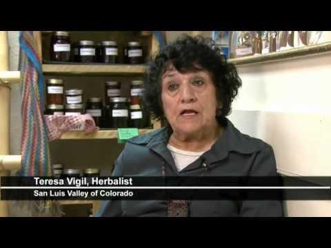 """""""OSHA"""" Medicinal Herb W_QT 480p (16x9).mov"""