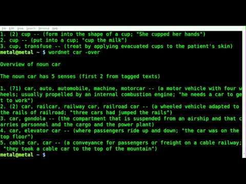 Definitions with Wordnet - BASH - Linux