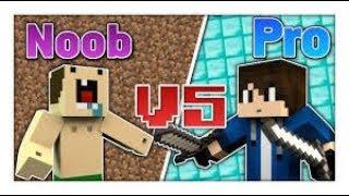Minecraft Noob VS Pro