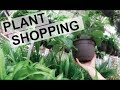 Plant Shopping At Home Depot