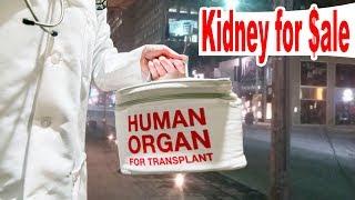 Kidney for Sale: The Black Market of Organs