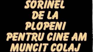 SORINEL DE LA PLOPENI PENTRU CINE AM MUNCIT