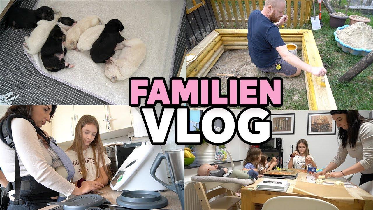 FAMILIEN VLOG | Welpen 1 Woche alt ❤️ | Kochen & Putzen | Thermomix Beraterin | Familie Diamanta 💎