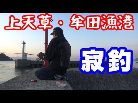 上天草・牟田漁港で寂釣【NC750XモトブログCC110】釣ーりんぐ