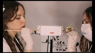 Twin ASMR Ear Cleaning
