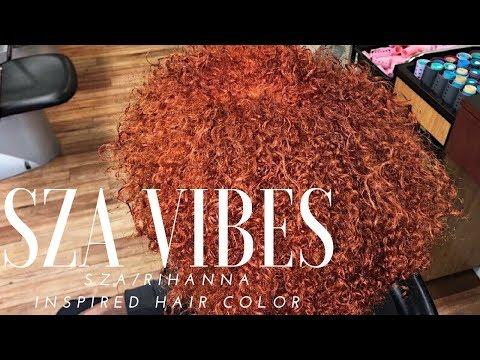 SZA/Rihanna Inspired Hair Color    Salon Experience