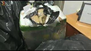 Torino, la squadra mobile sequestra mezza tonnellata di marijuana pronta per essere spacciata