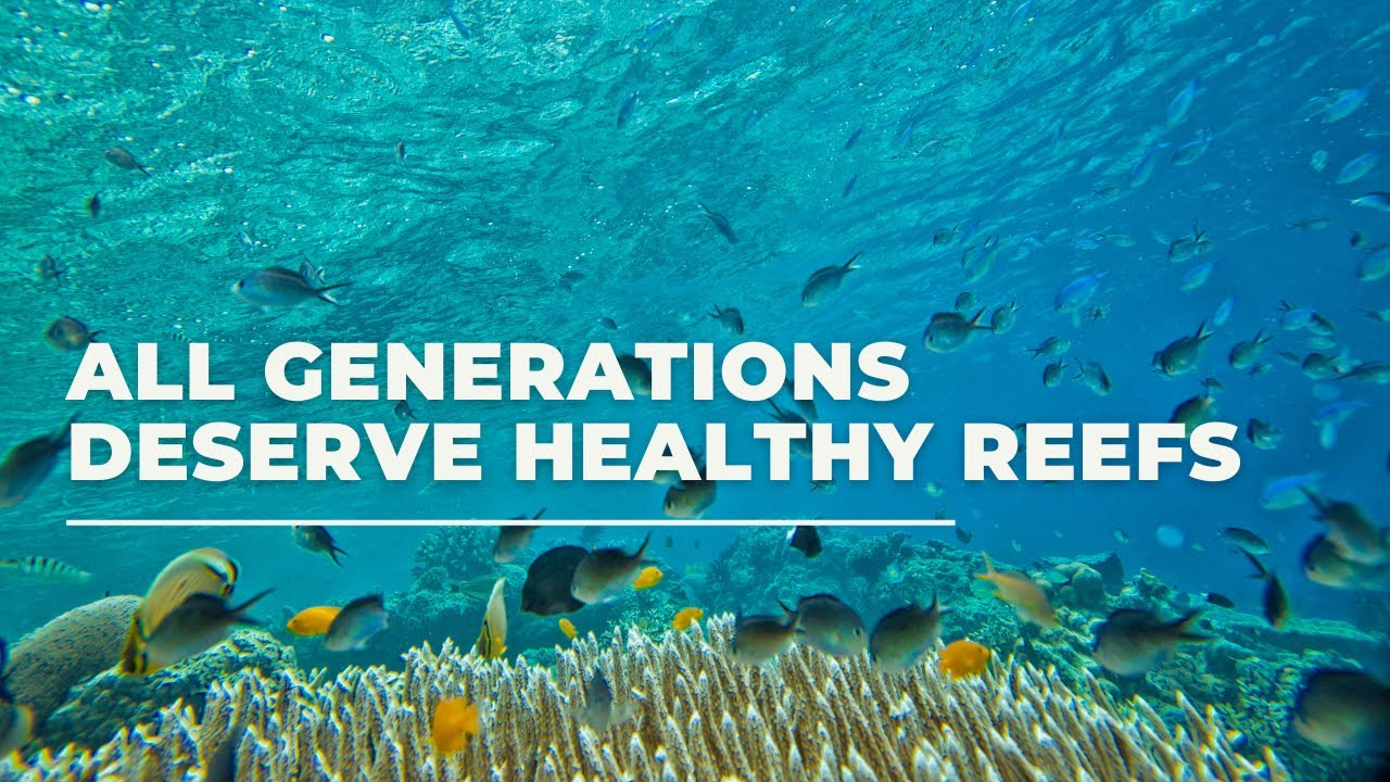 Protect Coral Reefs by Supporting Reef Guardians