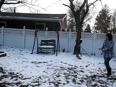 Dj and Tiffy snow ball fight - Видео онлайн
