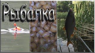 поплавочная рыбалка на плотву | рыбалка с рассвета | поплавок 2019