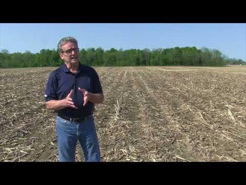 Corn School -  Drone Spraying