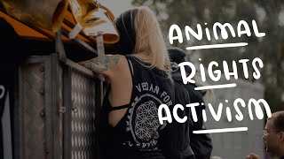 How To Get Involved In Animal Rights Activism