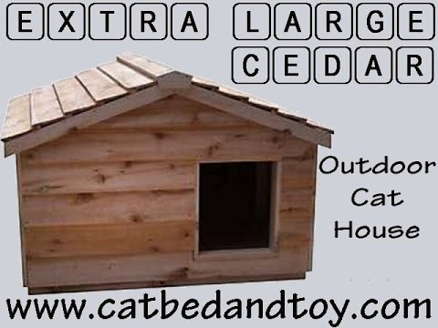 extra large cedar outdoor cat house youtube