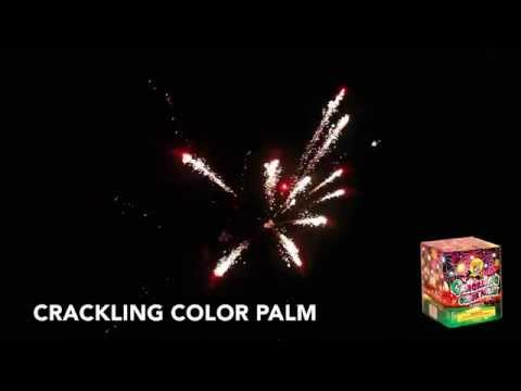 Crackling Color Palm
