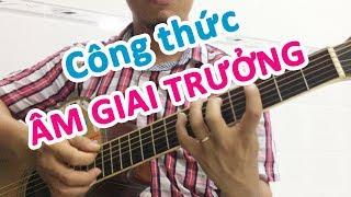 Âm giai TRƯỞNG là gì? Công thức đơn giản dễ hiểu cho người mới học đàn guitar | Guitar4Freedom