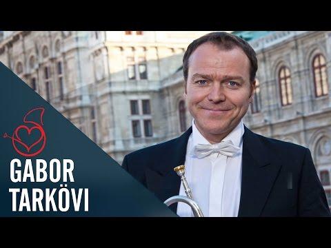 Gábor Tarkövi live on Sarah's Horn Hangouts