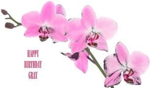 Gray   Flowers & Flores - Happy Birthday