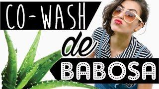 shampoo de babosa adaptado para no poo   co wash de babosa   receita caseira 1