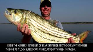 Top 10 scariest fished in the world