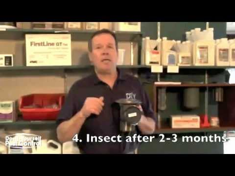 Termite Control, Do It Yourself Termite Control