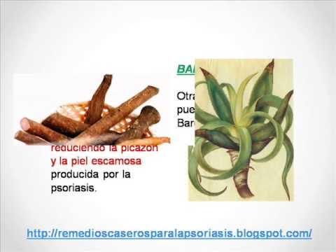 Tratamientos Caseros Y Plantas Medicinales Para Curar la