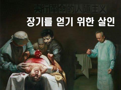 '장기를 얻기 위한 살인[Killed for Organs]'   파룬궁수련인 대상 강제 장기적출