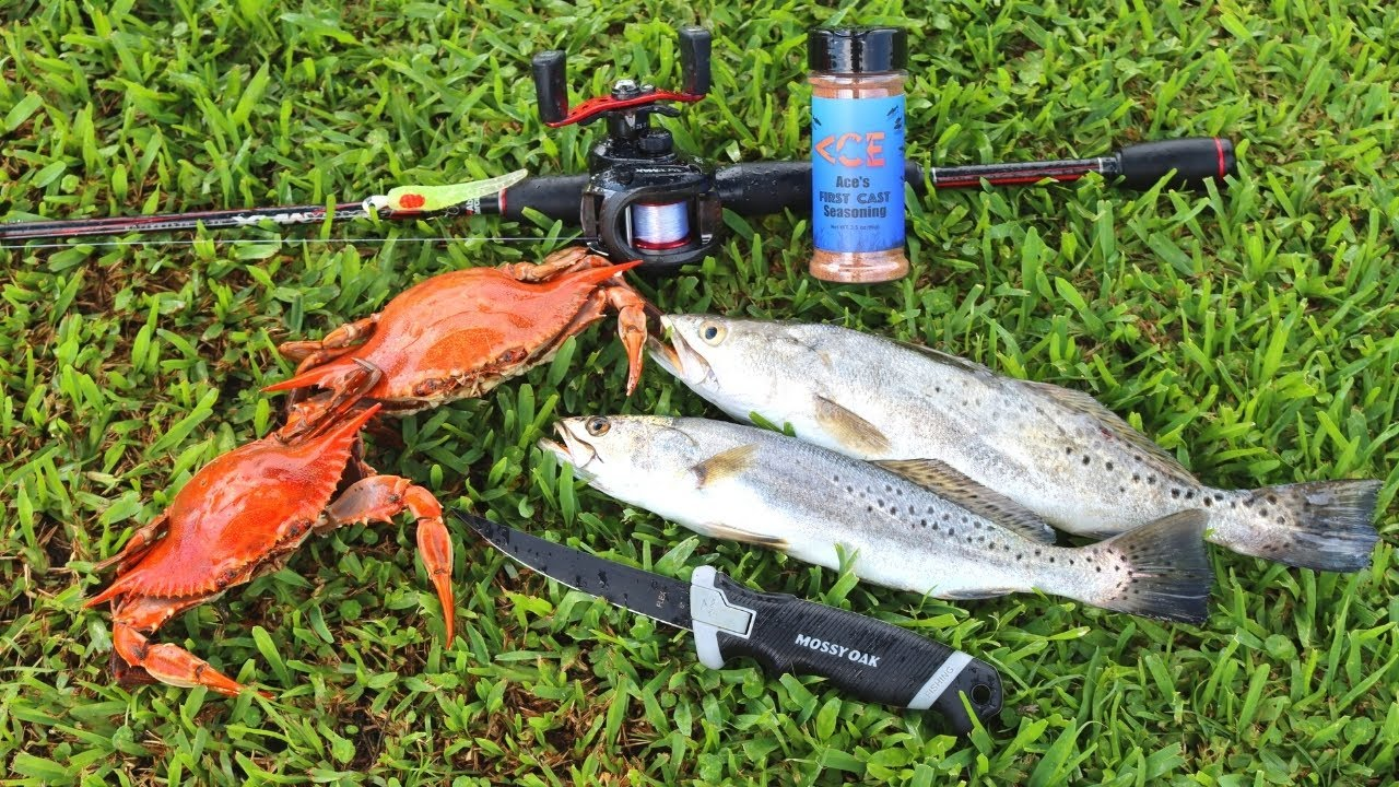 Blue Crab & Speckled Trout Catch n' Cook in Louisiana!