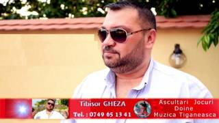 Tibisor GHEZA - Am plecat de jos in viata