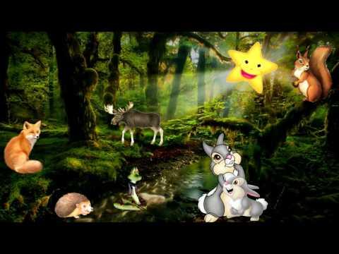 Волшебная сказка для детей с поучительным содержанием  Звёздочка