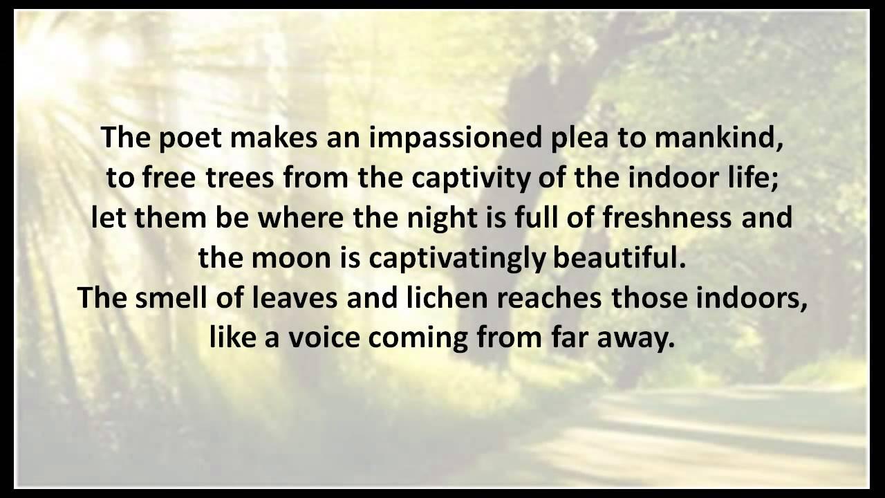 the trees cbse english poem class 10 youtube