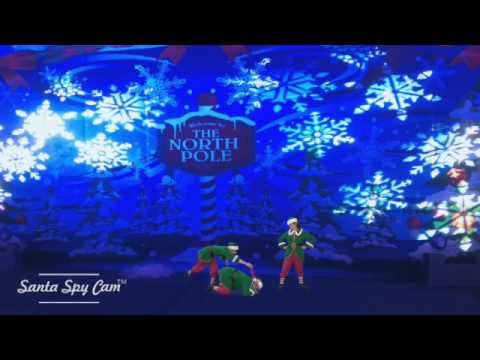 Wild Lights, Detroit Zoo attracts real Elves - YouTube