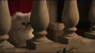 Мина. Девушка кошка