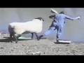 ataques de corderos, cabras y ovejas ☻vas a explotar de risa [Mr Yoner]