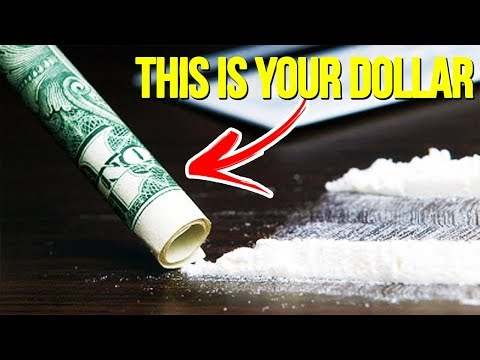 10 HIDDEN SECRETS On The Dollar Bill That Were Right In Front Of You | Chaos