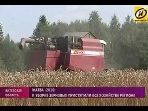 Уборка зерновых культур в Ошмянском районе