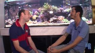 Help Reef entrevista!