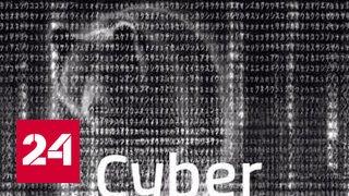 Американские обзывалки: сибирский кандидат и путинские кибернавты