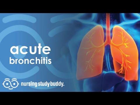 Acute Bronchitis - Nursing Study Buddy Video Library
