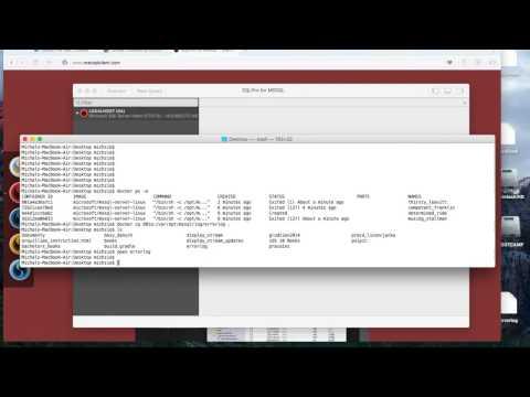 Using MS SQL Server on MacOS using Docker