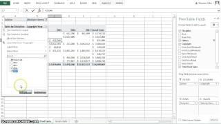 Excel 2013 Chapter 5 Subtotals, PivotTables and PivotCharts thumbnail
