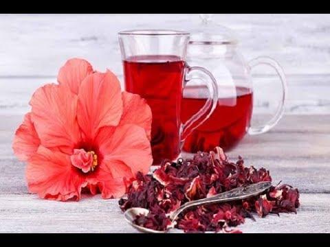 Hibiskus çayı Kürü Ibrahim Saraçoğlu Youtube