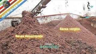 5 - Produzione olio extravergine d'oliva - Riutlizzo scarti - Sansa umida per biogas e nocciolino