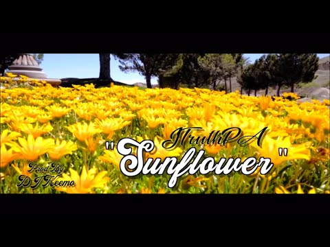 JTruthPA-Sunflower (Official Video)